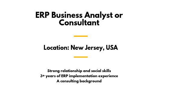 ERP Business Analyst or Consultant